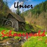 Schwarzwald - Unsere Heimat
